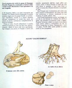 pompei03